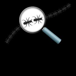 Das Logo des Ameisenhalter Wikis