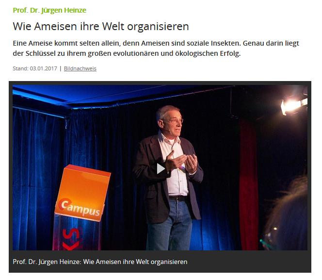 Prof. Dr. Jürgen Heinze: Wie Ameisen ihre Welt organisieren