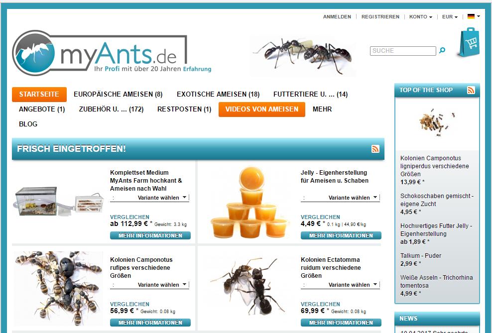 Ameisendiebstahl bei myants.de