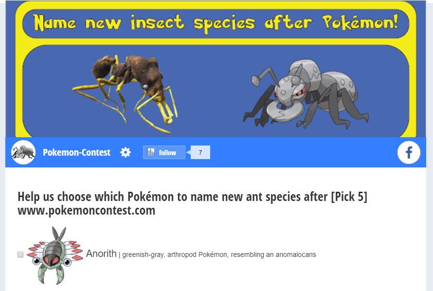Namen von Pokémons für 5 neue Ameisenarten