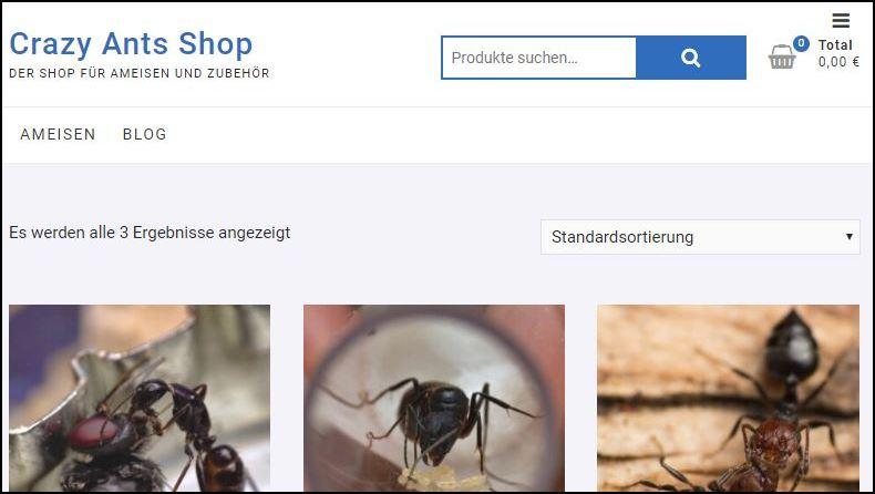Crazy Ants Shop