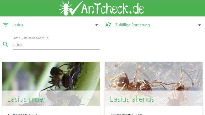Antcheck.de: Preisvergleichsseite für Ameisenshops